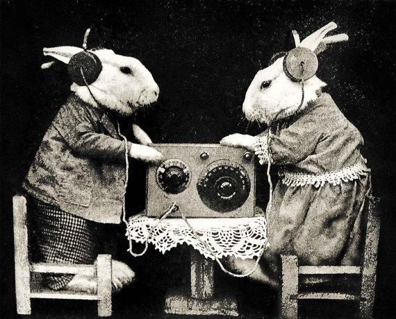 Easter Ham Rabits